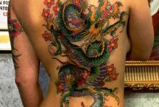 спина дракон